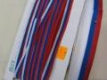 Trak slovenska zastava